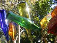 Bottleshrubone_1